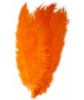 Oranje decoratie veren 50 cm