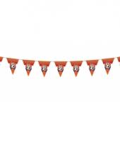 Oranje vlaggenlijnen met leeuw