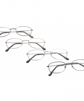 Ovalen leesbril 1 00