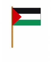 Palestijnse zwaaivlag