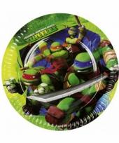 Papieren turtles feestbordjes