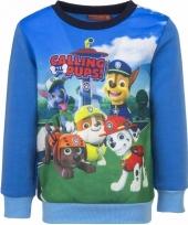 Paw patrol sweaters blauw