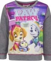 Paw patrol sweatshirt voor meisjes grijs