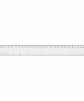 Plastic liniaal transparant 30 cm