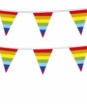 Plastic regenboog punt vlaggenlijn