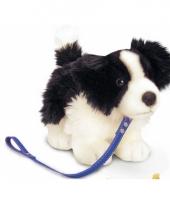 Pluche border collie hond aan lijn
