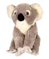 Pluche koala knuffeltje 30 cm
