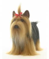 Pluche yorkshire terrier knuffel 38 cm