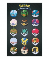 Pokemon decoratie poster pokeballs