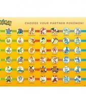 Pokemon decoratie poster pokemons