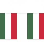 Polyester vlaggenlijn hongarije 3 m