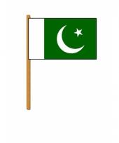 Polyester zwaaivlag van pakistan