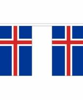 Polyster vlaggenlijn ijsland 3 m