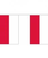 Polyster vlaggenlijn polen 3 m