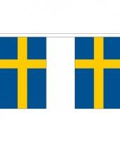 Polyster vlaggenlijn zweden 3 m
