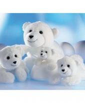 Pooldieren ijsbeer knuffel knut 48 cm