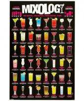 Poster met cocktails 61 x 91 5 cm