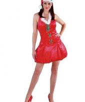 Rode fluwelen kerstjurk met muts