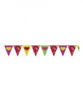 Romantische vlaggenlijn 4 meter 10064974