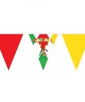 Rood groen gele vlaggenlijn carnaval 10 m
