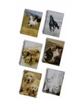 Schrijfboekje a6 wit paardje