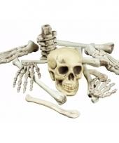 Skelet botten set van 12 stuks