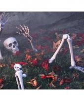 Skelet ledematen versiering