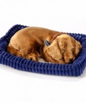 Slapende realistische knuffel dachshund