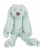 Speelgoed konijnen knuffel richie mint 28 cm