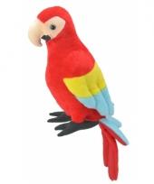 Speelgoed papegaai knuffel 38 cm