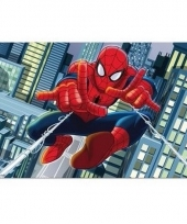 Spiderman 3d placemat type 2