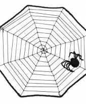 Spinnen decoratie 40 x 40 cm