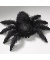 Spinnen knuffel 14 x 24 cm