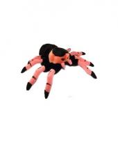 Spinnen knuffel tarantula roze 22 cm