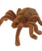 Spinnen knuffeldier van 19 cm