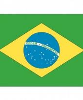 Stickers van de braziliaanse vlag