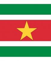 Stickers van de surinaamse vlag