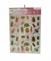 Stickervel met insecten plaatjes
