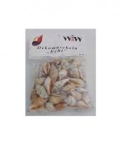 Strand schelpjes in zakje