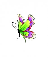 Tatoeage glitter vlinder groen paars