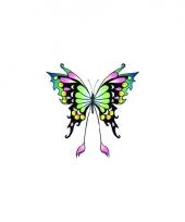 Tatoeage glitter vlinder zwart groen
