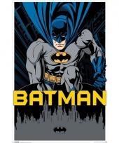 Themafeest batman poster 61 x 91 5 cm