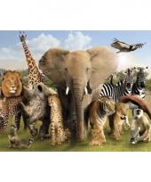Themafeest dieren poster 61 x 91 5 cm