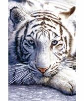 Themafeest dieren poster witte tijger