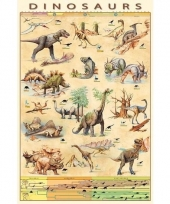 Themafeest dinos poster 61 x 91 cm