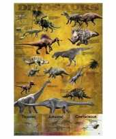 Themafeest dinosaurus poster 61 x 91 5 cm