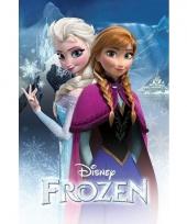Themafeest frozen poster 61 x 91 cm