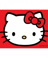 Themafeest hello kitty poster 61 x 91 5 cm