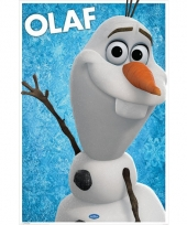 Themafeest olaf poster 61 x 91 5 cm