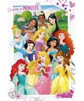 Themafeest prinsessen poster 61 x 91 5 cm
